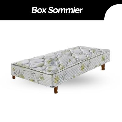 Box Sommier Cannon Platino 100x190x21 (sin Colchon)