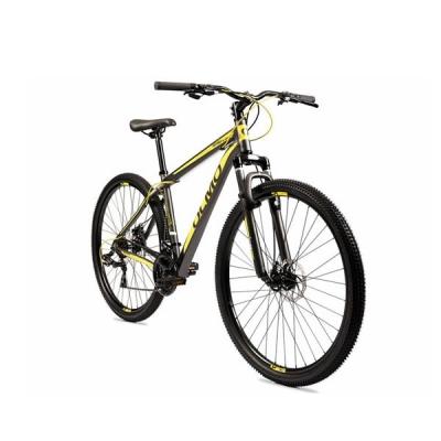 Bicic Olmo R29