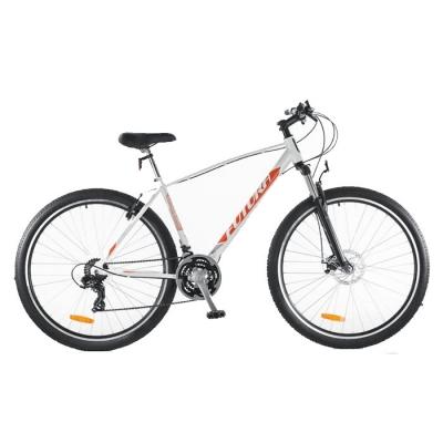 Bicicleta Futura R29